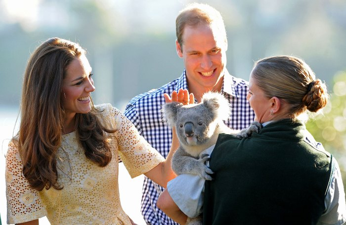 Prince William and Duchess Kate Catherine Video-Chat With Koala