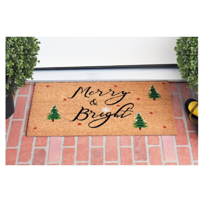 Hashtag Home Bradly Yule Non-Slip Outdoor Door Mat